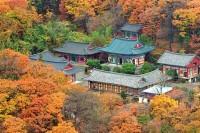 beomeosa-temple-busan