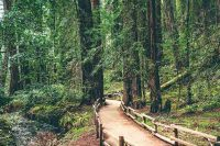 northern california recreation