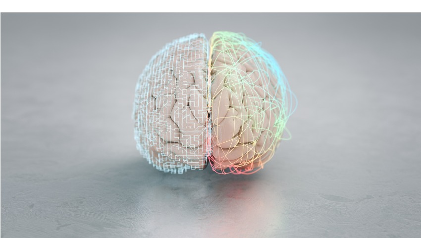 musical neuroscience