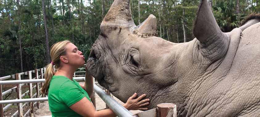 rhino-ngala-wildlife-preserve