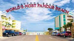 northeast florida group attractions