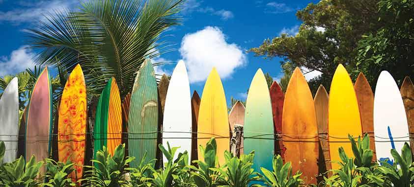 hawaii island and maui